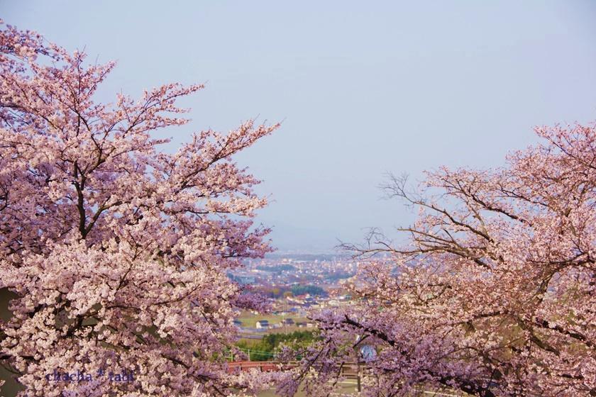 勝沼ぶどう郷から甲府盆地を見下ろす